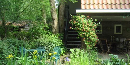 Bed and breakfast Ivy Cottage tuin